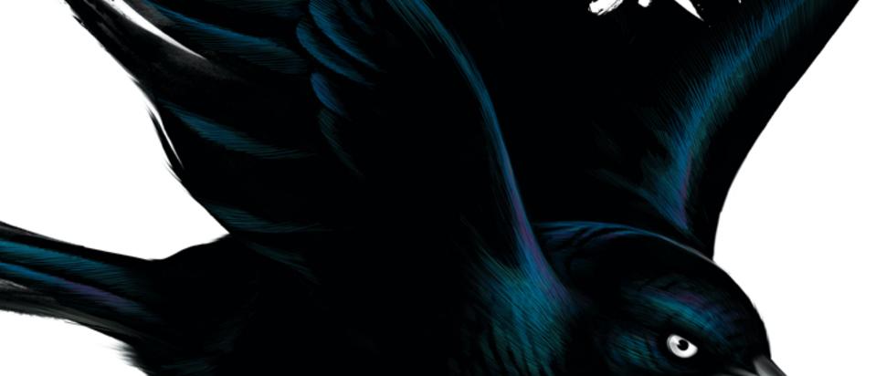 Fat Freddy's Drop – Blackbird