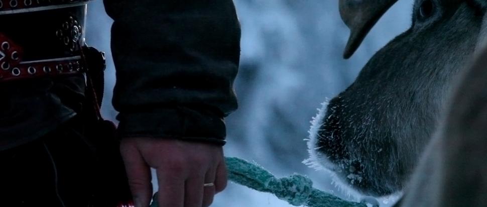 Jessica Oreck's Arctic Cowboys
