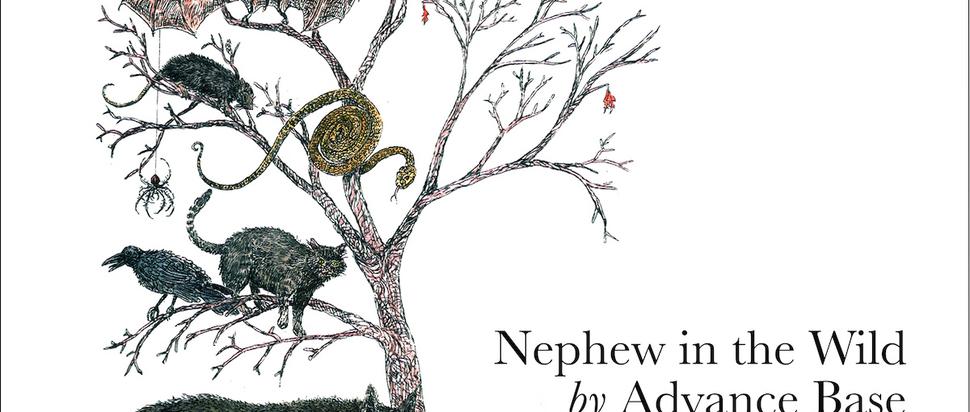 Advance Base – Nephew In The Wild