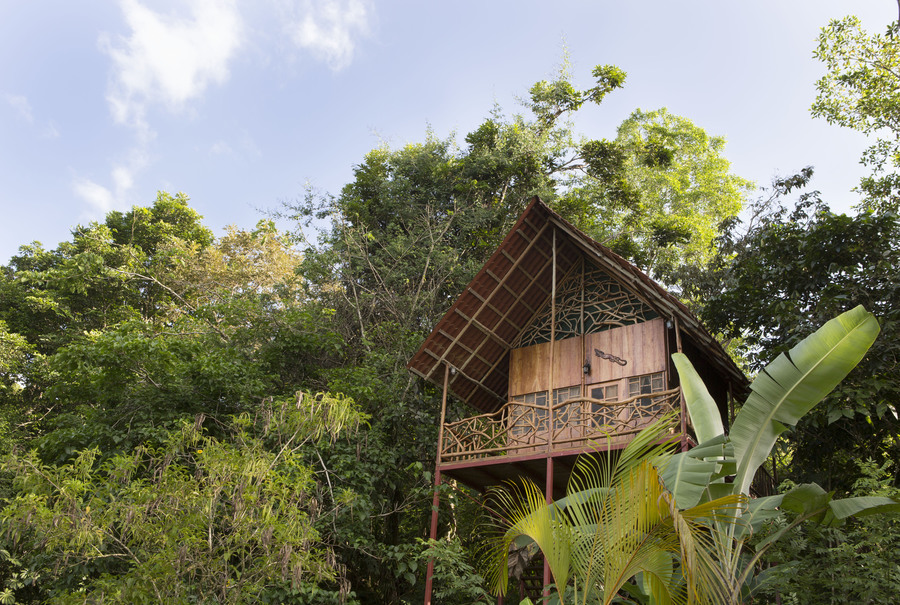 Costa Rica Airbnb Treehouse