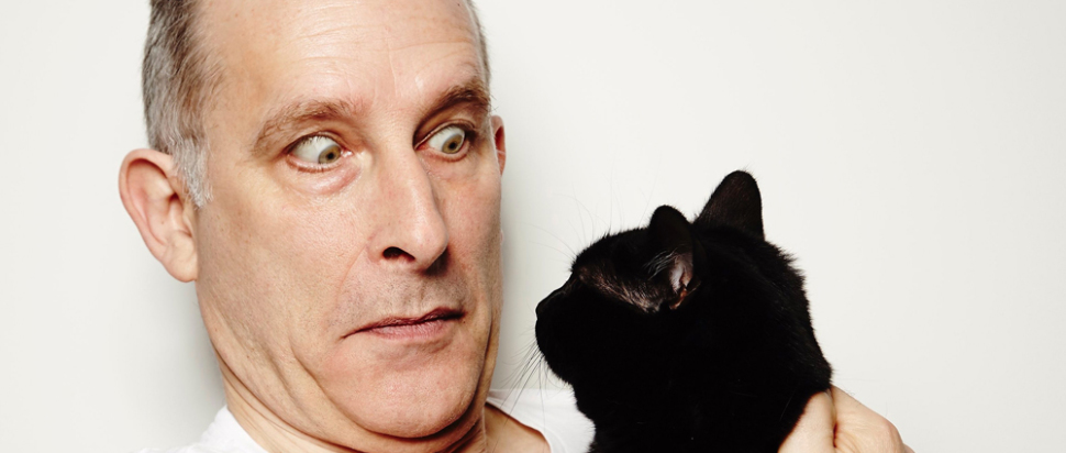 Nick Revell vs Lily, Evil Cat Queen of Earth Planet and The Laughing Fridge