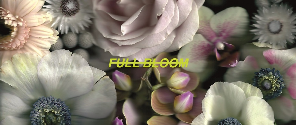 Alpines – Full Bloom