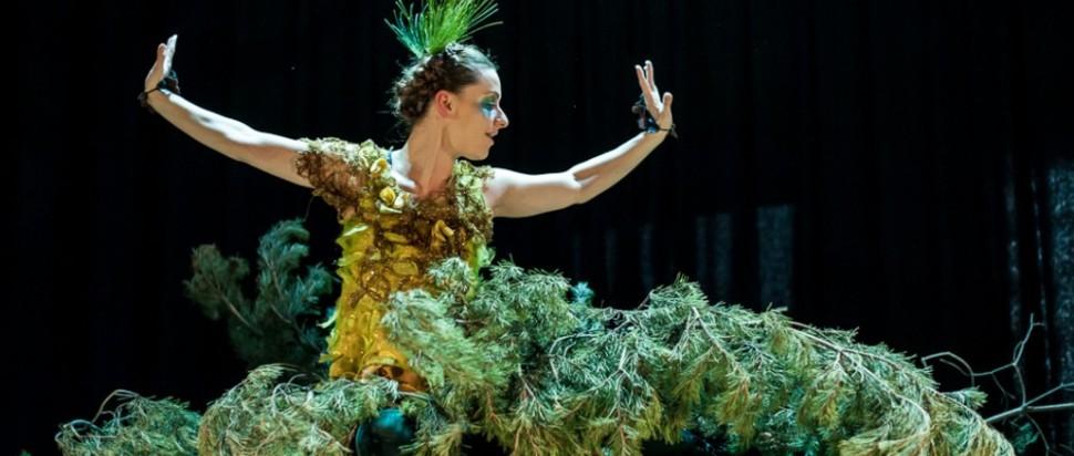 Poggle @ Festival Theatre, Edinburgh