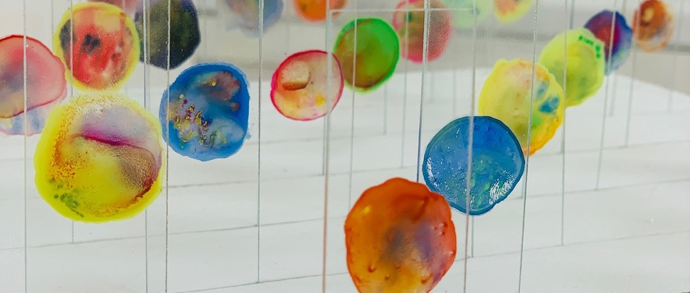 ECA Degree Show 2019_Shannon Patterson_Painting BA (Hons)_Untitled (Glass Slide Series)
