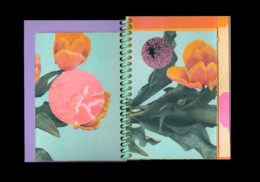 A pair of prints of flowers, set in a ringbound notebook.