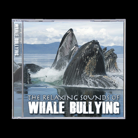 Whale Bullying