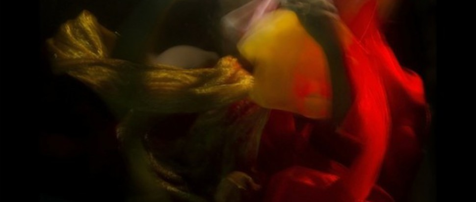 Flying Lotus – Until the Quiet Comes