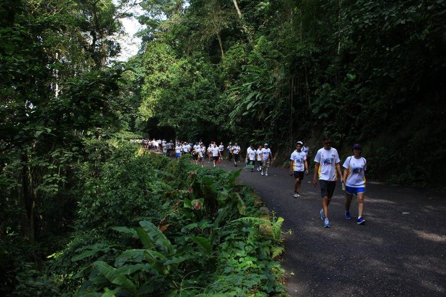 San Sebastian's Walk, Henri Pittier National Park