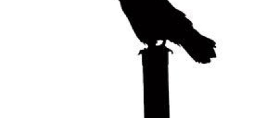 Grant Campbell - Beyond Below